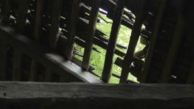 在孔的看法在被放弃的房子木屋顶在白俄罗斯的村庄 股票录像
