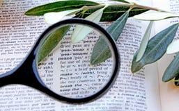 在字典的词和平 图库摄影