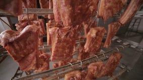 在存贮的烤猪排在食物工厂折磨 移动式摄影车射击 影视素材