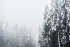 在孚日省山法国的一个冬天风景与多雪的f 图库摄影