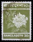 在孟加拉国打印的邮票显示花 库存图片