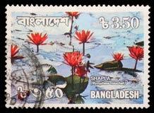 在孟加拉国打印的邮票显示荷花 免版税图库摄影