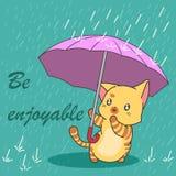 在季风季节的逗人喜爱的猫 皇族释放例证