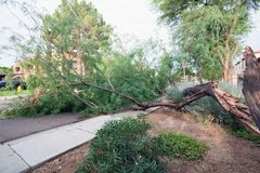 在季风风暴以后 免版税库存图片