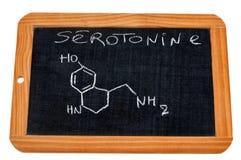在学校板岩写的5-羟色胺法国化学式 皇族释放例证