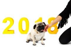 在它旁边的题字2018年,是一条小狗 背景位隔离白色 免版税库存照片
