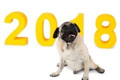 在它旁边的黄色题字2018年,一条小狗坐 新的符号年 隔离 免版税图库摄影
