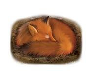 在它的孔的睡觉镍耐热铜 免版税图库摄影