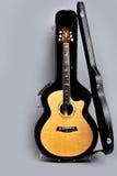 在它的情况的吉他 库存照片