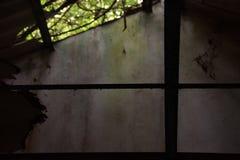 在守旧派废墟的天窗 免版税库存图片