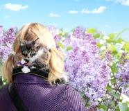在安全的小小猫 免版税图库摄影