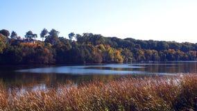 在安大略湖的秋天 库存图片