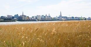 在安特卫普的看法由河斯海尔德河在富兰德,比利时 图库摄影