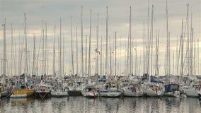 在安霍尔特岛海岛上的游艇的港口 影视素材