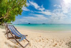 在完善的热带沙子海滩,披披岛的海滩睡椅,泰国 库存照片