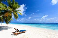 在完善的热带沙子海滩的海滩睡椅 库存图片