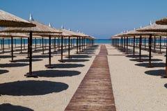 在完善的热带海滩的伞 库存图片