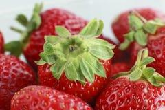 在宏观射击的许多resh草莓 免版税库存照片