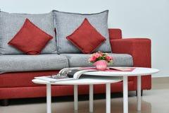 在客厅内部的现代红色和灰色沙发 免版税库存照片