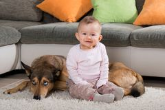 在客厅的小孩和多壳的狗 库存图片