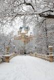 在室外冬天的公园的积雪的豪宅 免版税库存图片