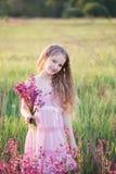 在室外的日落的美丽的女孩机智花 免版税图库摄影