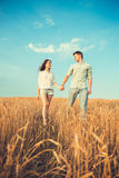在室外的爱的新夫妇 夫妇拥抱 在停留和亲吻在日落的领域的爱的年轻美好的夫妇 图库摄影