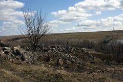 在室外高地背景的春天风景  免版税库存图片