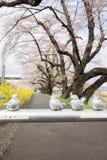 在宫城, Tohoku,日本金属化与可爱的鸟雕塑的障碍在沿城石河岸的边路在春天 库存照片