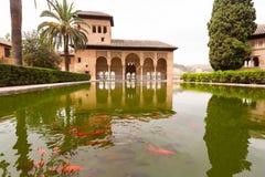 在宫殿里面的阿尔汉布拉金鱼格拉纳达 库存图片