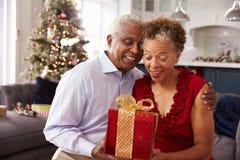 在家交换圣诞节礼物的资深夫妇 免版税库存图片
