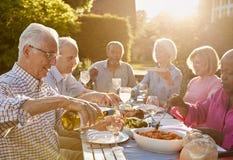 在家享受室外晚餐会的小组资深朋友 免版税库存图片