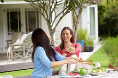 在家享有生活与午餐的女朋友 免版税库存图片