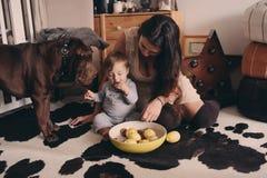 在家使用与狗的愉快的家庭 母亲和吃曲奇饼的男婴 免版税库存图片