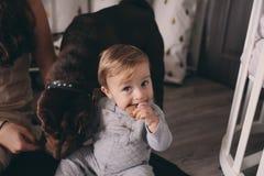 在家使用与狗的愉快的家庭 母亲和吃曲奇饼的男婴 图库摄影