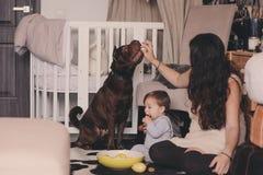 在家使用与狗的愉快的家庭 母亲和吃曲奇饼的男婴 免版税图库摄影