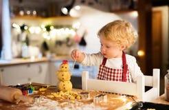 在家做姜饼曲奇饼的小孩男孩 库存图片