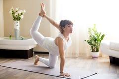 在家做猎鸟犬瑜伽姿势的孕妇 免版税库存图片