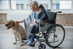 在家宠爱猎犬的镇静残疾妇女 图库摄影