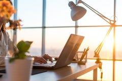 在家工作使用计算机的成人女实业家,学习在个人计算机屏幕上的企业想法 免版税图库摄影