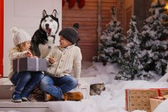 在家庆祝与他们的狗的圣诞节 与狗的儿童游戏与装饰的圣诞树在背景中 免版税图库摄影