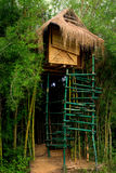 在家庭结构树上面 库存照片