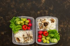 在容器、米用蘑菇和新鲜的菜莴苣,萝卜,葡萄,黄瓜,蕃茄的食物 黑暗的背景,上面竞争 免版税库存图片