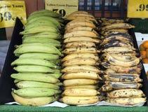 在容器的大蕉 免版税图库摄影