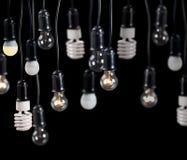 在容器的电灯在黑色 免版税库存照片