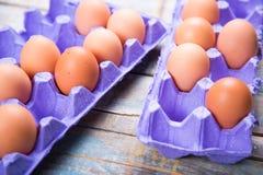 在容器的鸡蛋 免版税图库摄影