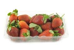 在容器被隔绝的特写镜头的成熟草莓 免版税库存照片