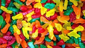 在宽松动物形状的五颜六色的糖果 向量例证