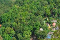 在密林中的村庄 免版税库存图片