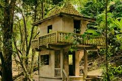 在密林中的老被放弃的房子 免版税库存照片